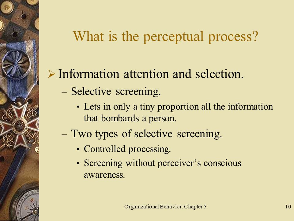 Organizational Behavior: Chapter 510 What is the perceptual process?  Information attention and selection. – Selective screening. Lets in only a tiny