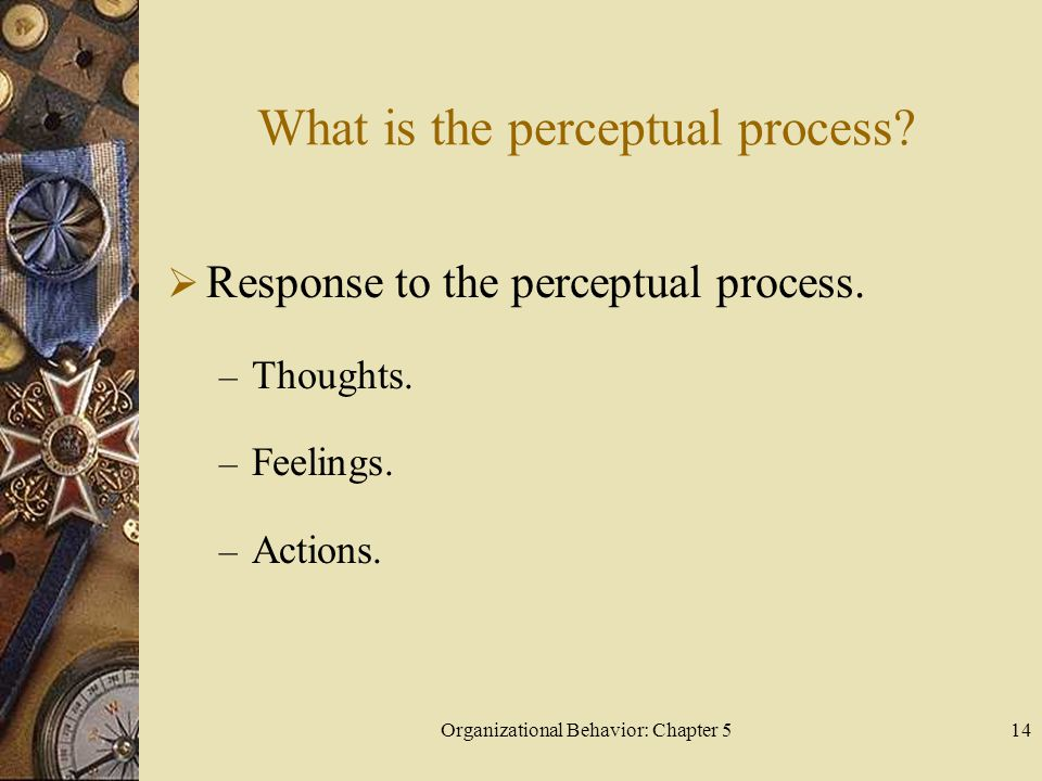 Organizational Behavior: Chapter 514 What is the perceptual process?  Response to the perceptual process. – Thoughts. – Feelings. – Actions.