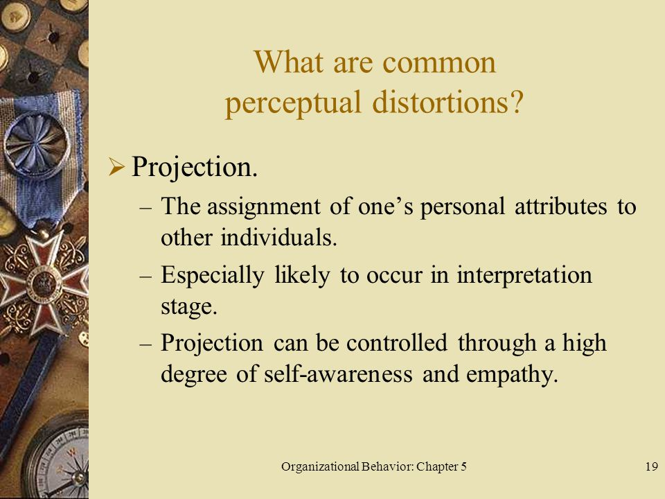 Organizational Behavior: Chapter 519 What are common perceptual distortions?  Projection. – The assignment of one's personal attributes to other indi