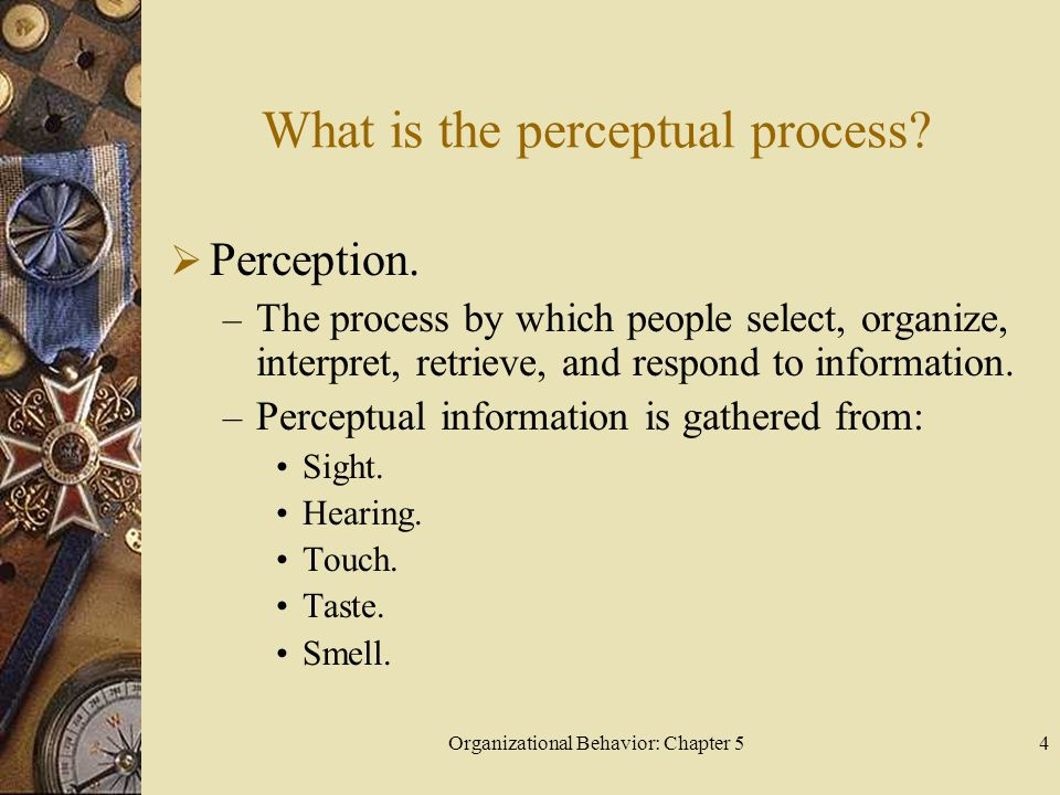 Organizational Behavior: Chapter 54 What is the perceptual process?  Perception. – The process by which people select, organize, interpret, retrieve,