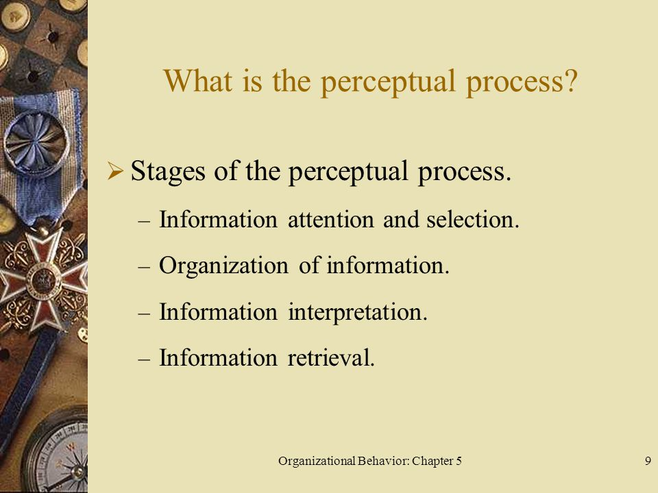 Organizational Behavior: Chapter 59 What is the perceptual process?  Stages of the perceptual process. – Information attention and selection. – Organ