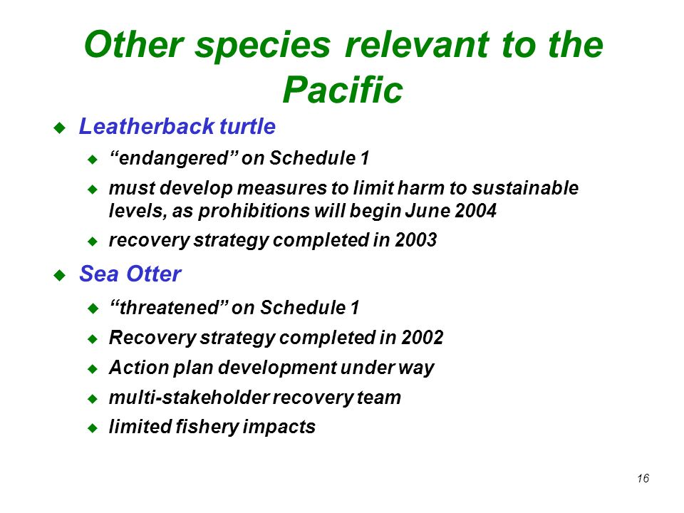 16 Other species relevant to the Pacific u Leatherback turtle u endangered on Schedule 1 u must develop measures to limit harm to sustainable levels, as prohibitions will begin June 2004 u recovery strategy completed in 2003 u Sea Otter u threatened on Schedule 1 u Recovery strategy completed in 2002 u Action plan development under way u multi-stakeholder recovery team u limited fishery impacts