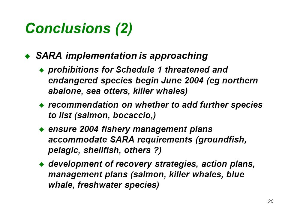 20 Conclusions (2) u SARA implementation is approaching u prohibitions for Schedule 1 threatened and endangered species begin June 2004 (eg northern abalone, sea otters, killer whales) u recommendation on whether to add further species to list (salmon, bocaccio,) u ensure 2004 fishery management plans accommodate SARA requirements (groundfish, pelagic, shellfish, others ?) u development of recovery strategies, action plans, management plans (salmon, killer whales, blue whale, freshwater species)