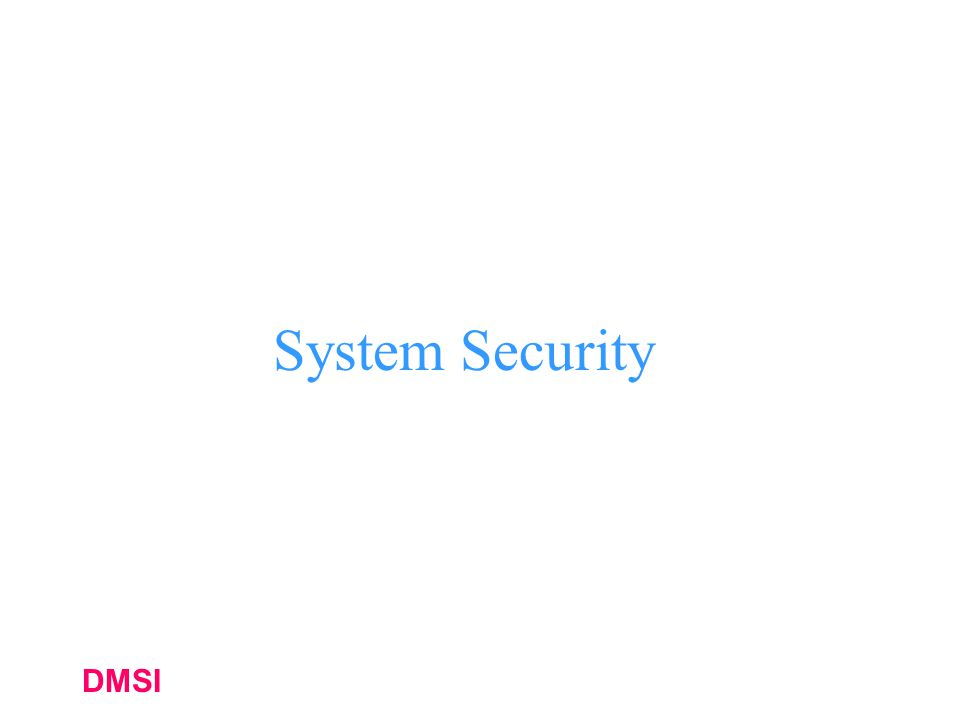 DMSI System Security