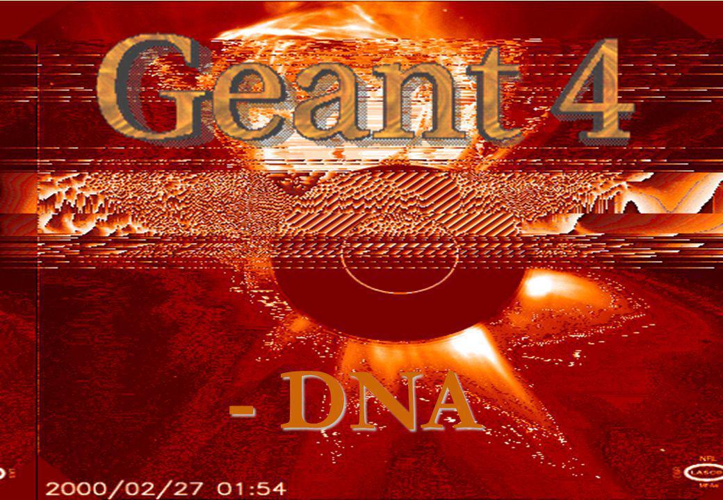 - DNA