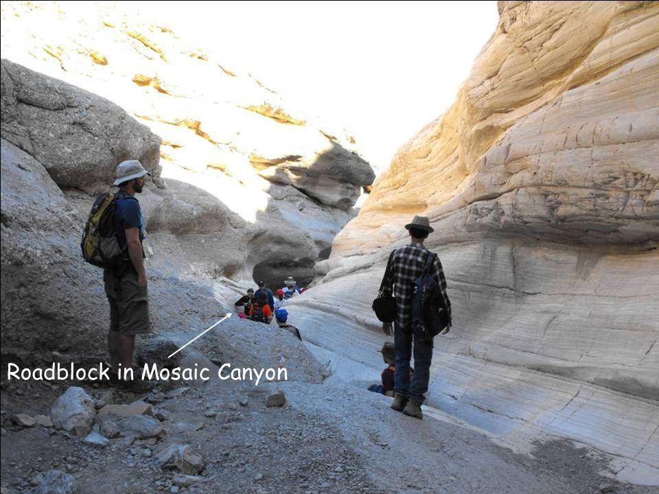 Roadblock in Mosaic Canyon