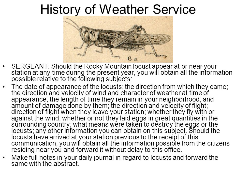 History of Weather Service SERGEANT: Should the Rocky Mountain locust appear at or near your station at any time during the present year, you will obt