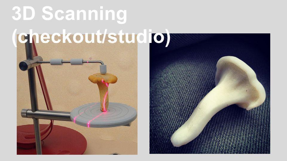 3D Scanning (checkout/studio)