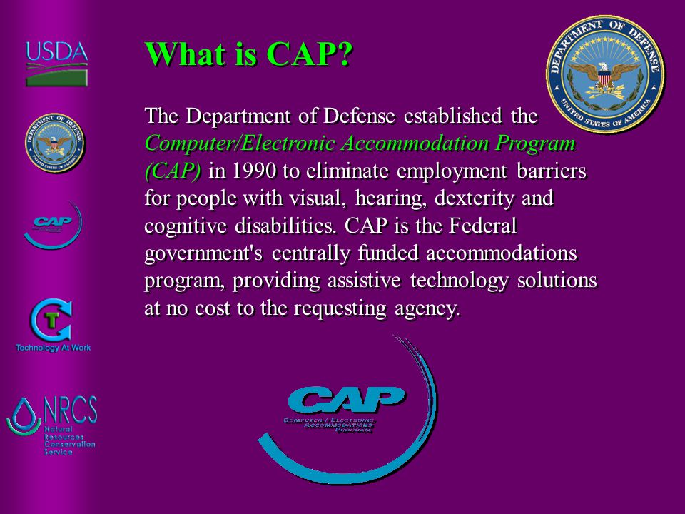 The Department of Defense established the Computer/Electronic Accommodation Program (CAP) in 1990 to eliminate employment barriers for people with vis