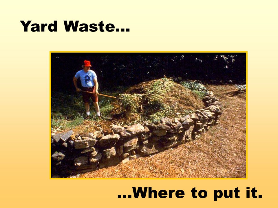 …Where to put it. Yard Waste…