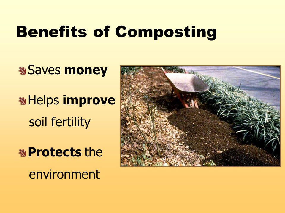 Benefits of Composting Saves money Helps improve soil fertility Protects the environment