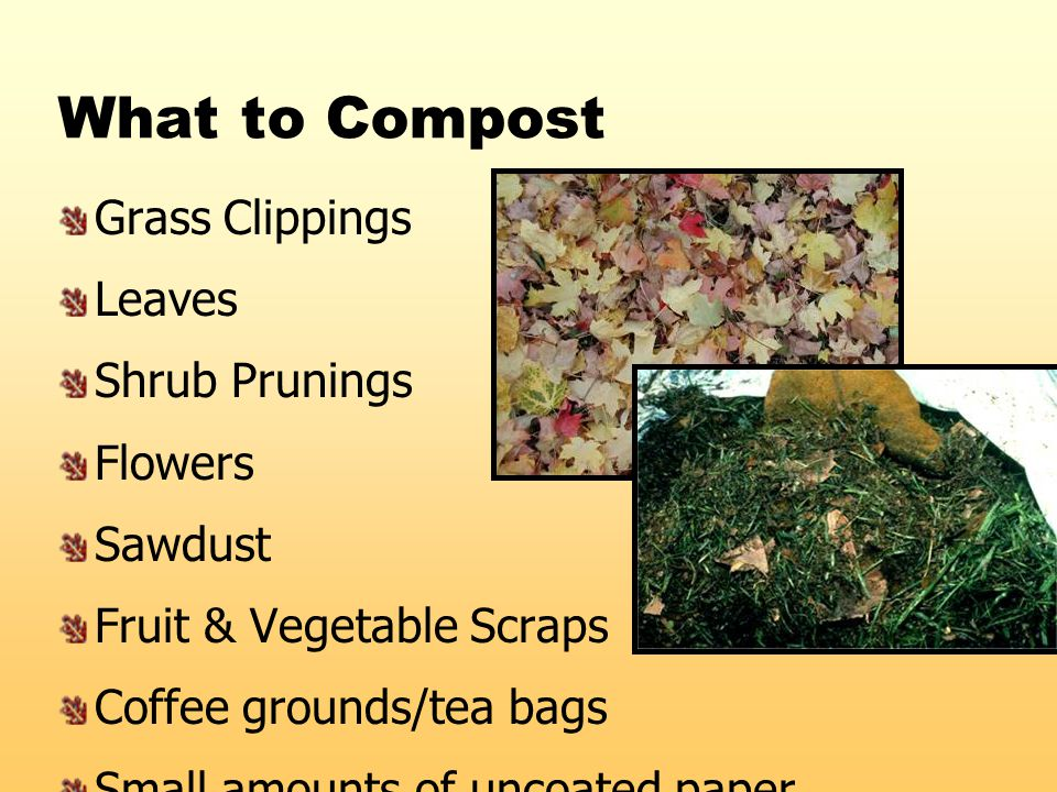What to Compost Grass Clippings Leaves Shrub Prunings Flowers Sawdust Fruit & Vegetable Scraps Coffee grounds/tea bags Small amounts of uncoated paper
