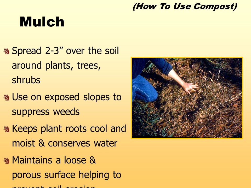 "Mulch Spread 2-3"" over the soil around plants, trees, shrubs Use on exposed slopes to suppress weeds Keeps plant roots cool and moist & conserves wate"