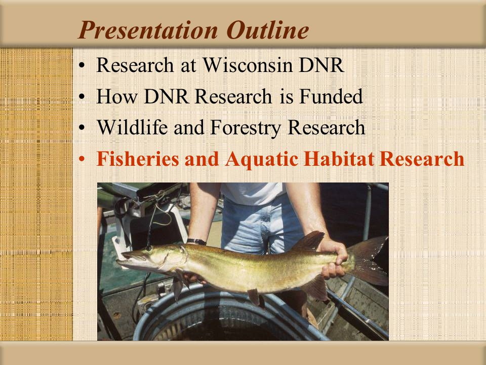 Presentation Outline Research at Wisconsin DNR How DNR Research is Funded Wildlife and Forestry Research Fisheries and Aquatic Habitat Research