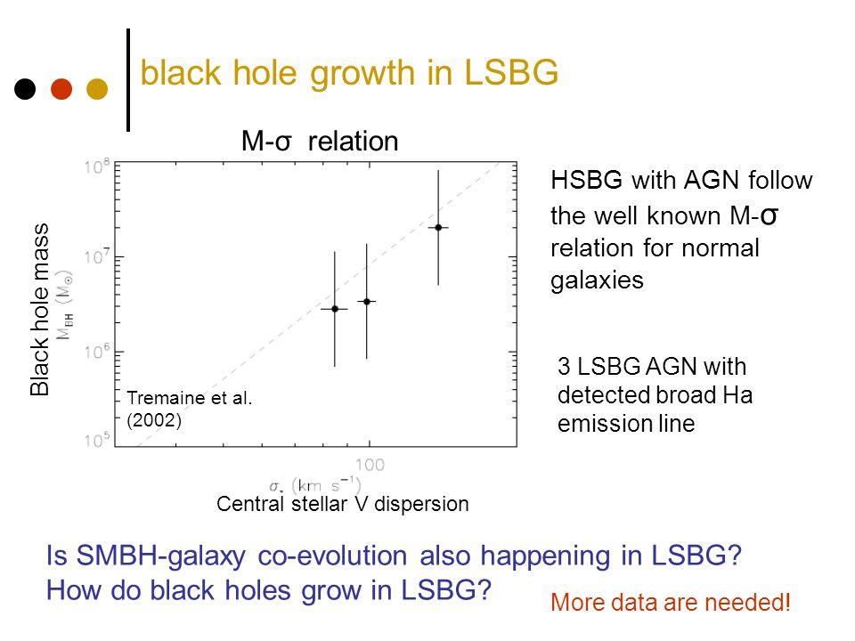 black hole growth in LSBG 3 LSBG AGN with detected broad Ha emission line Black hole mass Central stellar V dispersion Tremaine et al.