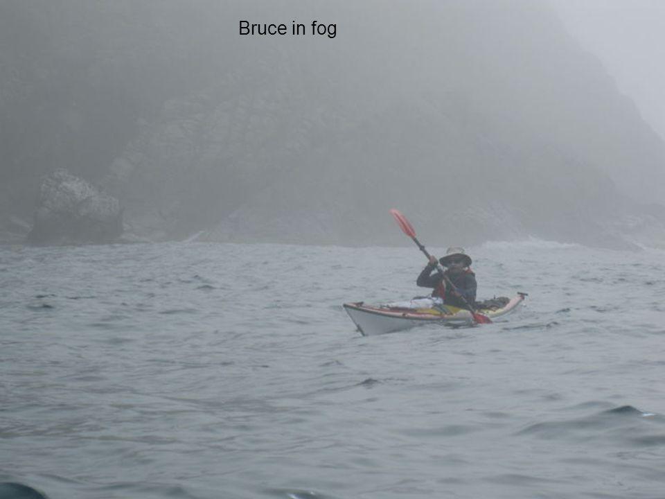 Bruce in fog