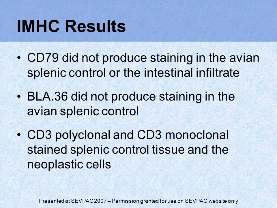 IMHC Results CD79 did not produce staining in the avian splenic control or the intestinal infiltrate BLA.36 did not produce staining in the avian splenic control CD3 polyclonal and CD3 monoclonal stained splenic control tissue and the neoplastic cells