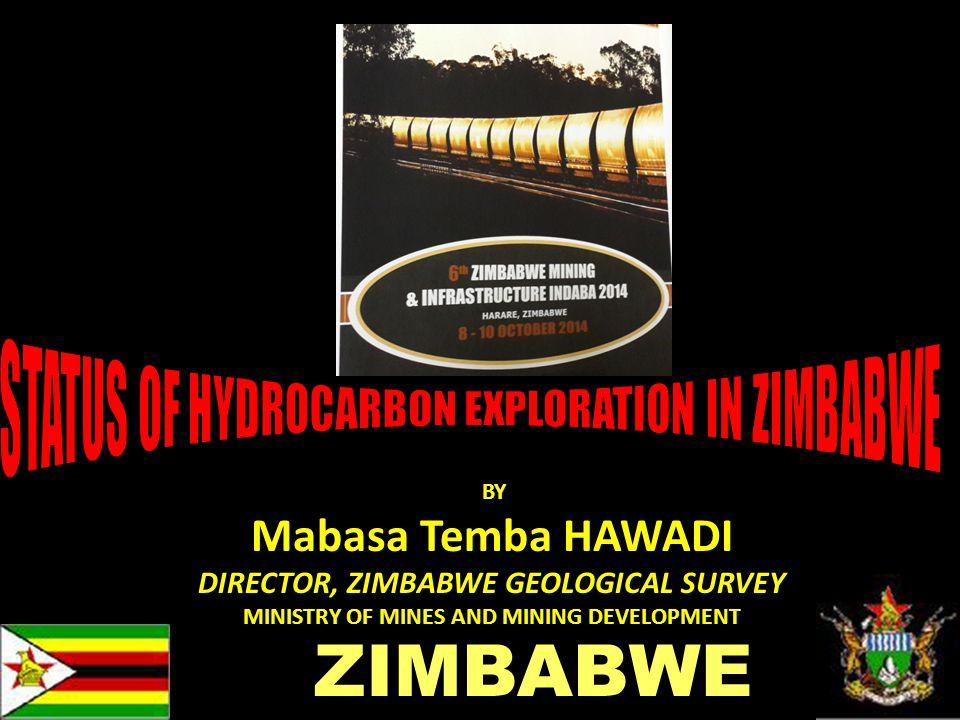 1 BY Mabasa Temba HAWADI DIRECTOR, ZIMBABWE GEOLOGICAL SURVEY MINISTRY OF MINES AND MINING DEVELOPMENT ZIMBABWE