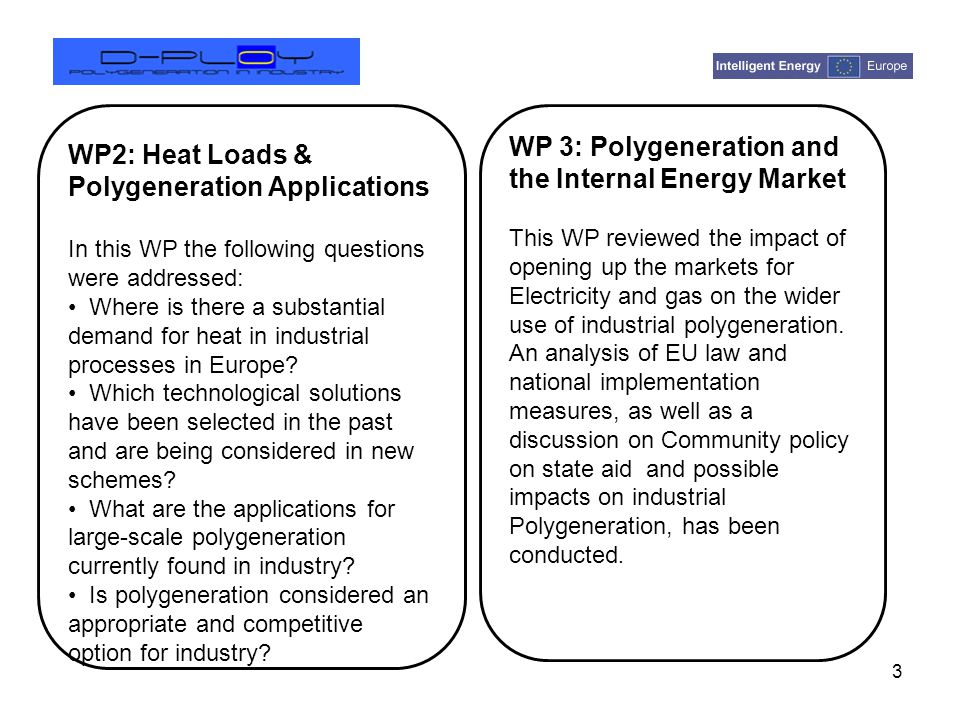 WP5: Polygeneration and the EU ETS 4 This WP aimed at understanding the key parameters of industrial polygeneration projects from an industrial company standpoint.