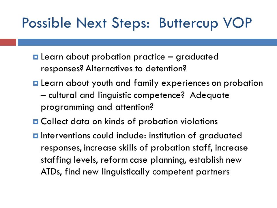 Possible Next Steps: Buttercup VOP  Learn about probation practice – graduated responses.