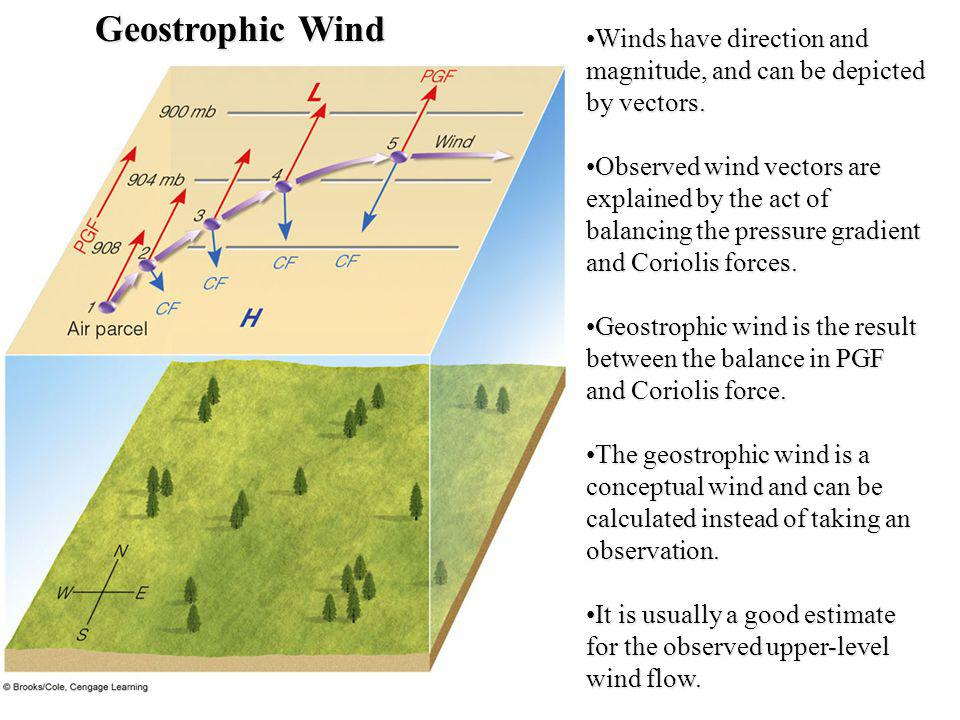 Geostrophic Wind Winds have direction and magnitude, and can be depicted by vectors.Winds have direction and magnitude, and can be depicted by vectors