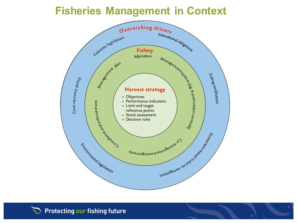Fisheries Management in Context