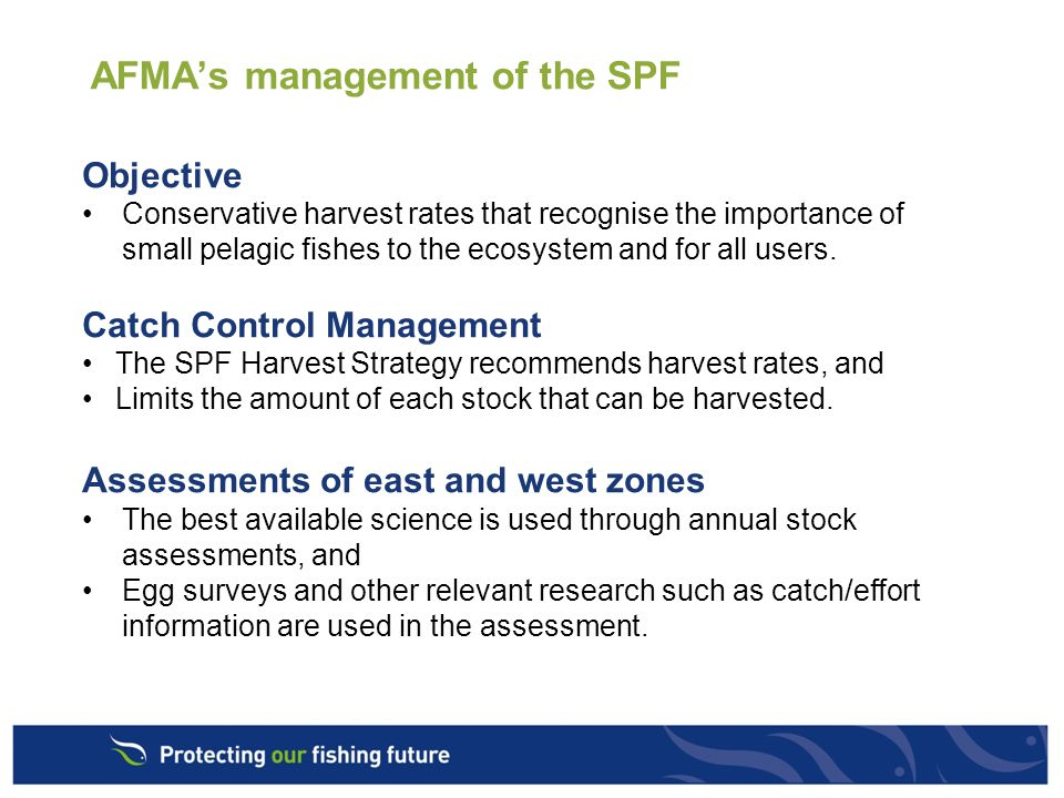 AFMA's management of the SPF Objective Conservative harvest rates that recognise the importance of small pelagic fishes to the ecosystem and for all users.