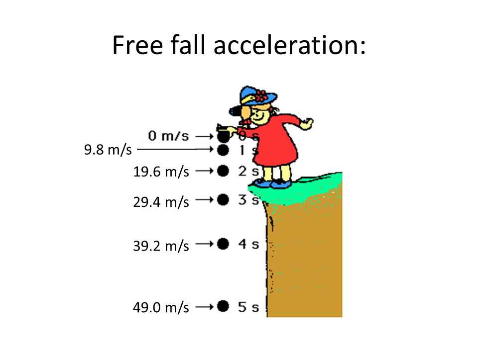 Free fall acceleration: 9.8 m/s 19.6 m/s 29.4 m/s 39.2 m/s 49.0 m/s