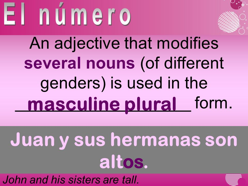An adjective that modifies several nouns (of different genders) is used in the ___________________ form.