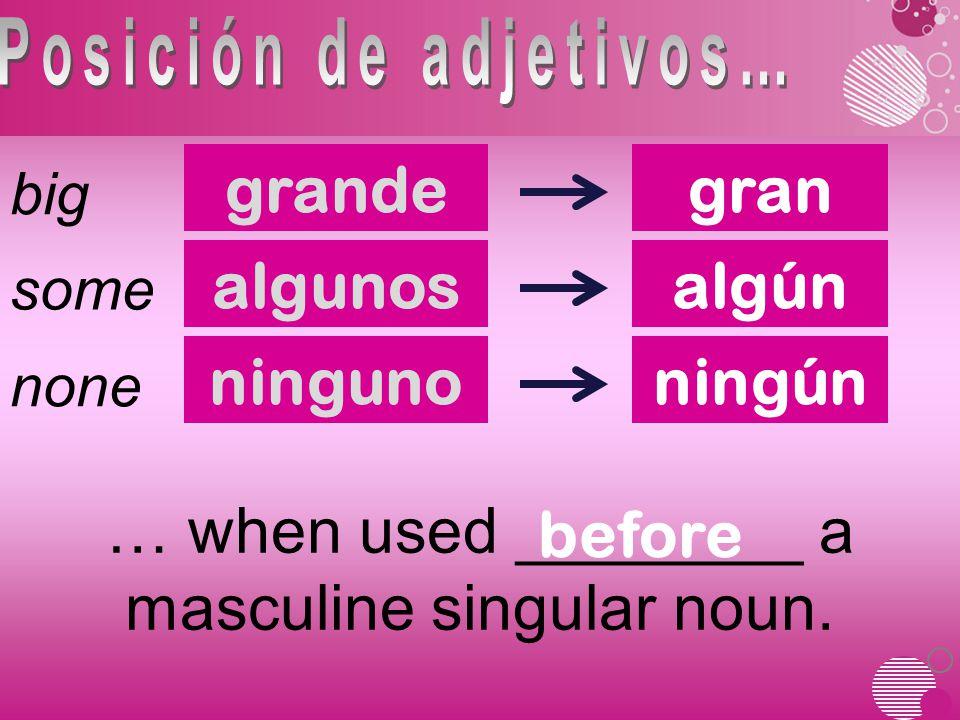 grande big gran some none algunosalgún ningunoningún … when used ________ a masculine singular noun.