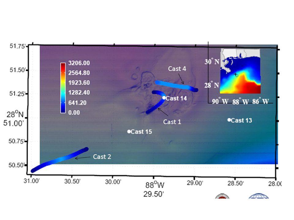 Vertical Dissolved Gas Profiles at MC118 6 Methane Nitrogen Argon Down Cast Up Cast Time (min) 0 15 30