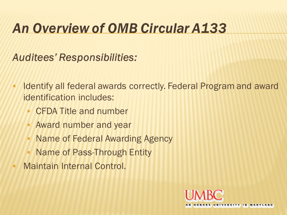 An Overview of OMB Circular A133 Auditees' Responsibilities:  Identify all federal awards correctly.