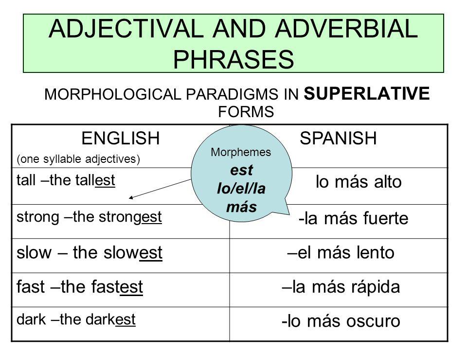 ADJECTIVAL AND ADVERBIAL PHRASES MORPHOLOGICAL PARADIGMS IN SUPERLATIVE FORMS ENGLISH (one syllable adjectives) SPANISH tall –the tallest – lo más alto strong –the strongest -la más fuerte slow – the slowest –el más lento fast –the fastest –la más rápida dark –the darkest -lo más oscuro Morphemes est lo/el/la más