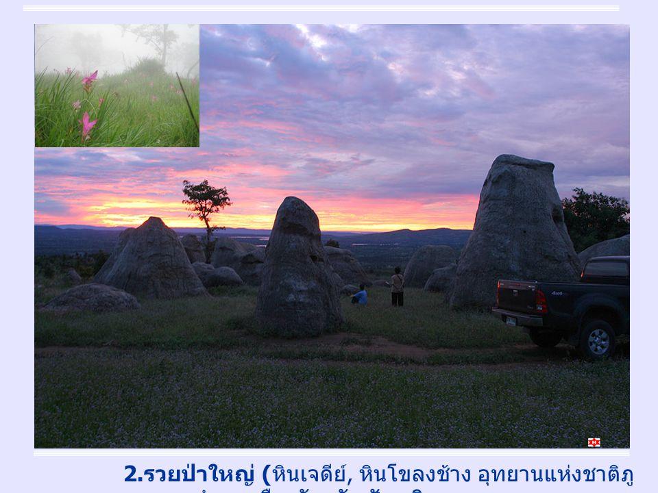 4 2. รวยป่าใหญ่ ( หินเจดีย์, หินโขลงช้าง อุทยานแห่งชาติภู แลนคา อำเภอเมืองจังหวัดชัยภูมิ