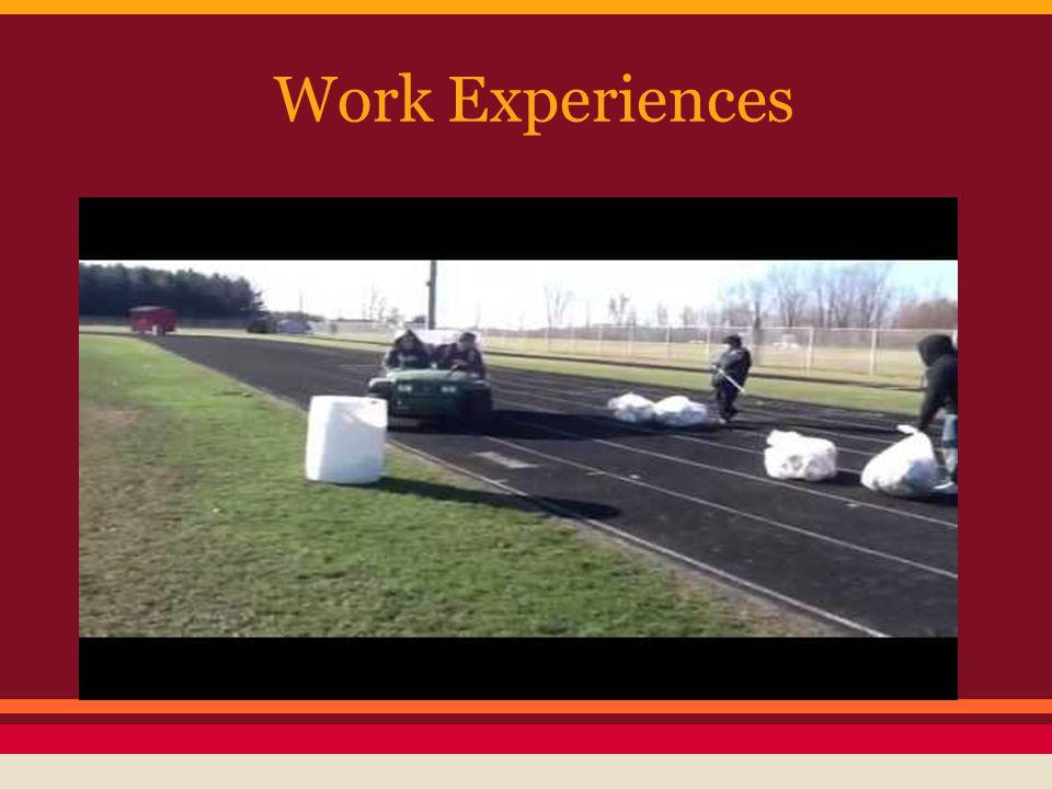 Work Experiences
