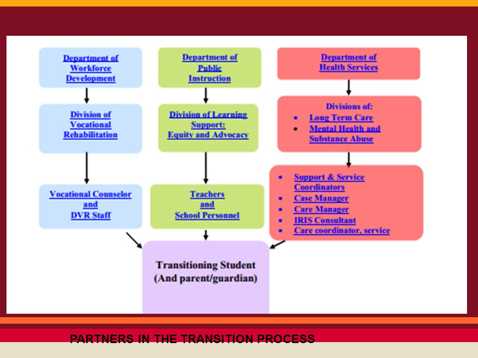 PARTNERS IN THE TRANSITION PROCESS