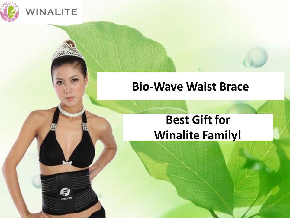 Bio-Wave Waist Brace Best Gift for Winalite Family!