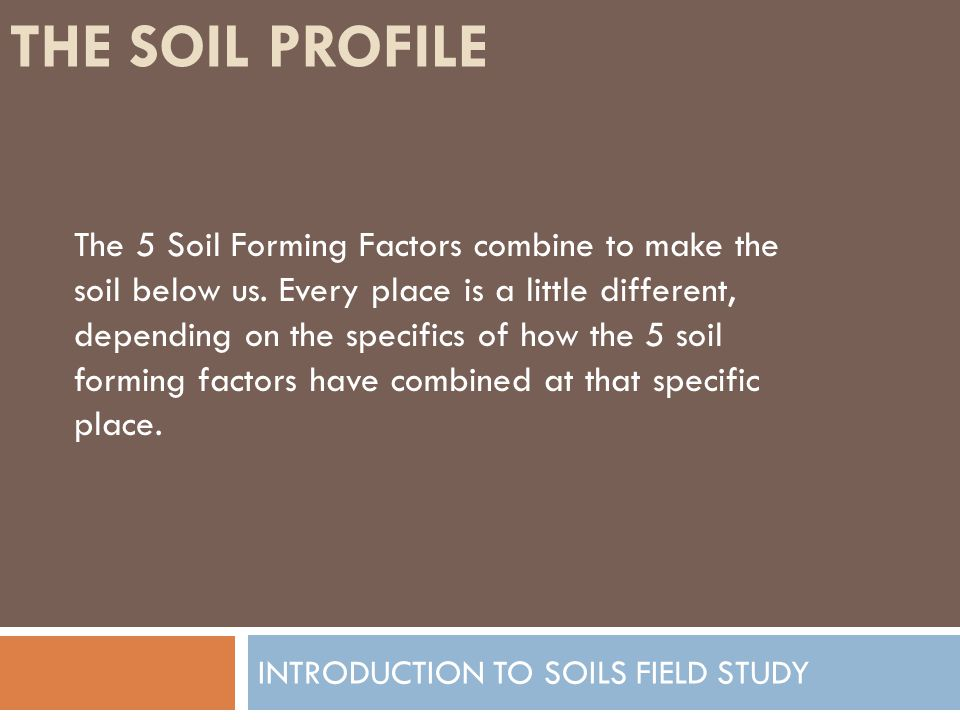 THE SOIL PROFILE INTRODUCTION TO SOILS FIELD STUDY The 5 Soil Forming Factors combine to make the soil below us. Every place is a little different, de