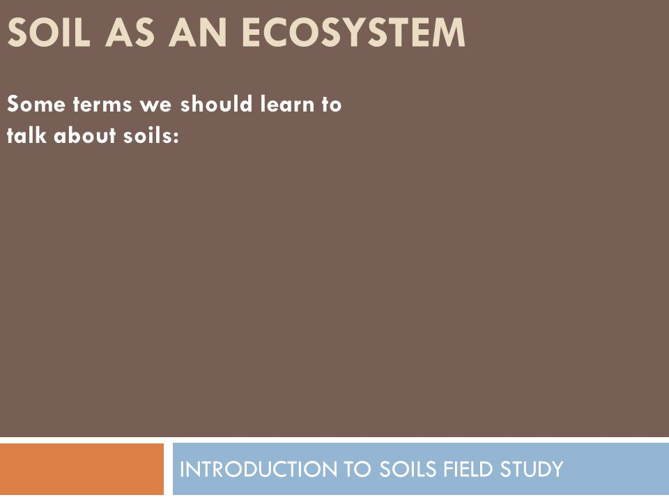 HOW SOIL FORMS INTRODUCTION TO SOILS FIELD STUDY Factor 3: Topography Definition: The slope of the land which can be one of the things that determines the type of soil that is formed.