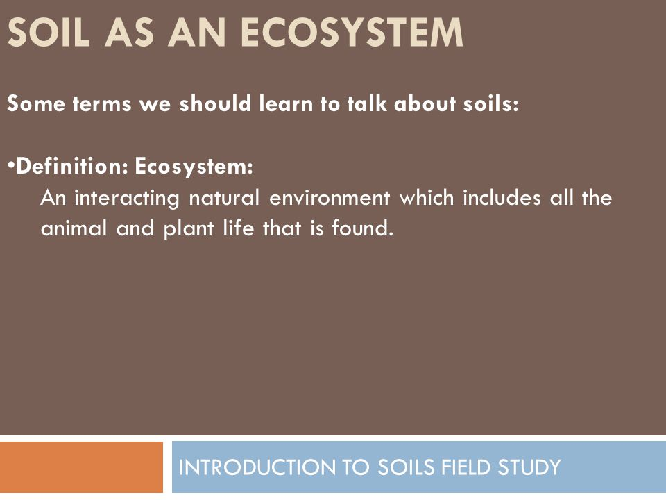 HOW SOIL FORMS INTRODUCTION TO SOILS FIELD STUDY Factor 4: Biologic Influences Definition: Living organisms that influence the development of the soil and soil profile.