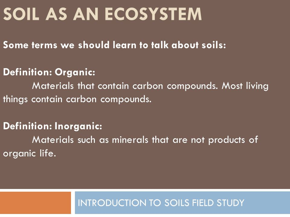 SOIL AS AN ECOSYSTEM INTRODUCTION TO SOILS FIELD STUDY Some terms we should learn to talk about soils: Definition: Organic: Materials that contain car