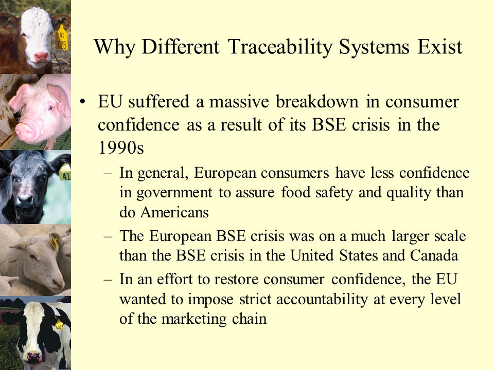 Why Different Traceability Systems Exist EU suffered a massive breakdown in consumer confidence as a result of its BSE crisis in the 1990s –In general, European consumers have less confidence in government to assure food safety and quality than do Americans –The European BSE crisis was on a much larger scale than the BSE crisis in the United States and Canada –In an effort to restore consumer confidence, the EU wanted to impose strict accountability at every level of the marketing chain