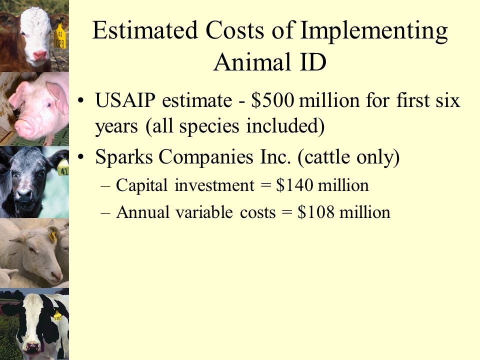 Estimated Costs of Implementing Animal ID USAIP estimate - $500 million for first six years (all species included) Sparks Companies Inc.