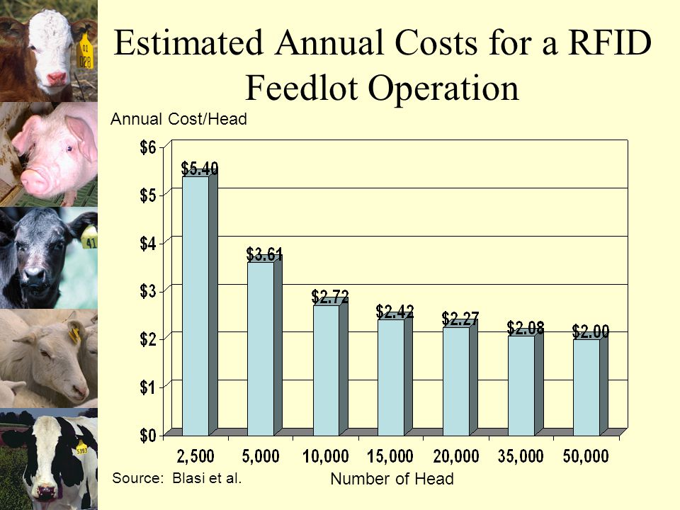 Estimated Annual Costs for a RFID Feedlot Operation Number of Head Source: Blasi et al.