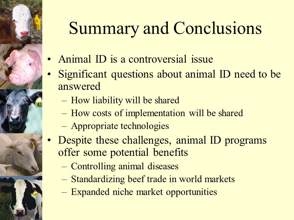 Summary and Conclusions Animal ID is a controversial issue Significant questions about animal ID need to be answered –How liability will be shared –How costs of implementation will be shared –Appropriate technologies Despite these challenges, animal ID programs offer some potential benefits –Controlling animal diseases –Standardizing beef trade in world markets –Expanded niche market opportunities