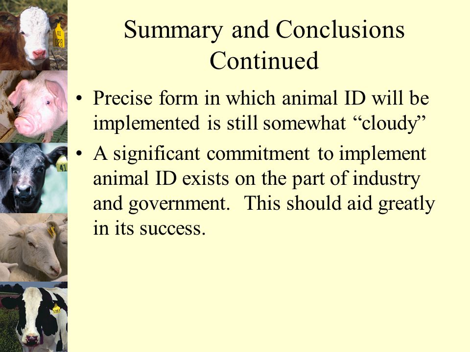 Summary and Conclusions Continued Precise form in which animal ID will be implemented is still somewhat cloudy A significant commitment to implement animal ID exists on the part of industry and government.