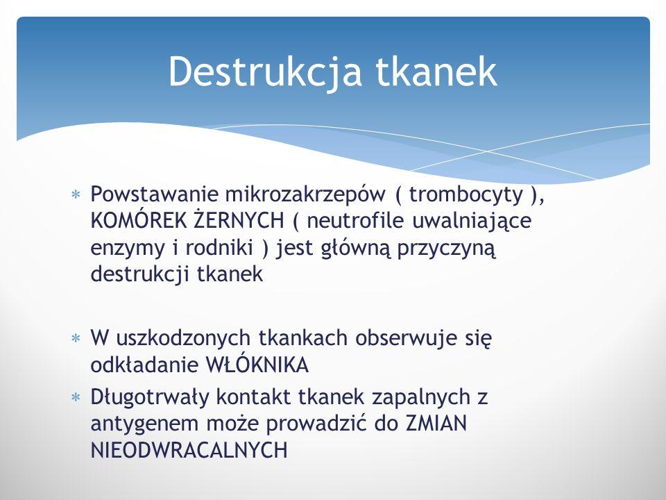  Powstawanie mikrozakrzepów ( trombocyty ), KOMÓREK ŻERNYCH ( neutrofile uwalniające enzymy i rodniki ) jest główną przyczyną destrukcji tkanek  W u
