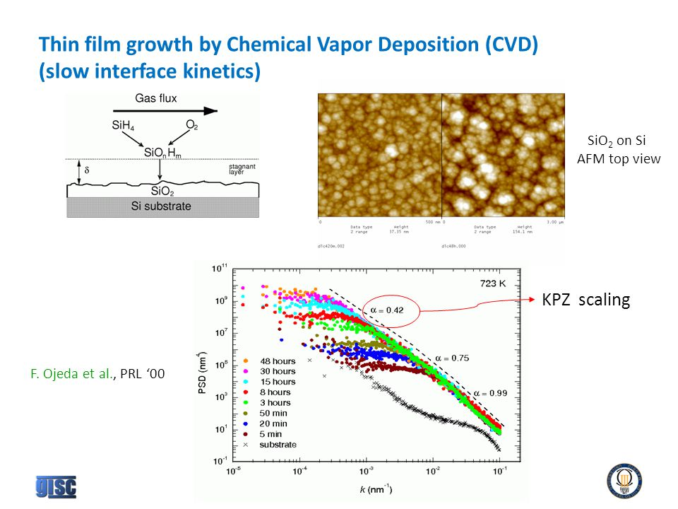 Thin film growth by Chemical Vapor Deposition (CVD) (slow interface kinetics) SiO 2 on Si AFM top view KPZ scaling F.
