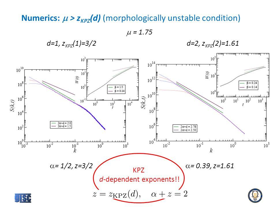 Numerics:  > z KPZ (d) (morphologically unstable condition)  = 1.75 d=1, z KPZ (1)=3/2d=2, z KPZ (2)=1.61  = 1/2, z=3/2  = 0.39, z=1.61 KPZ d-dependent exponents!!