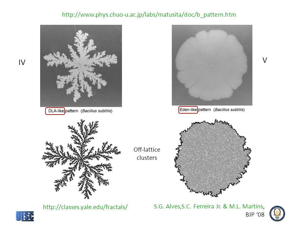 IV V http://www.phys.chuo-u.ac.jp/labs/matusita/doc/b_pattern.htm http://classes.yale.edu/fractals/ S.G.